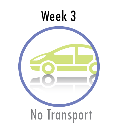 Week 1 No Transport